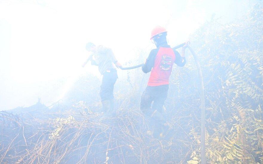 Indonezijoje dėl miškų gaisrų areštuota beveik 200 asmenų