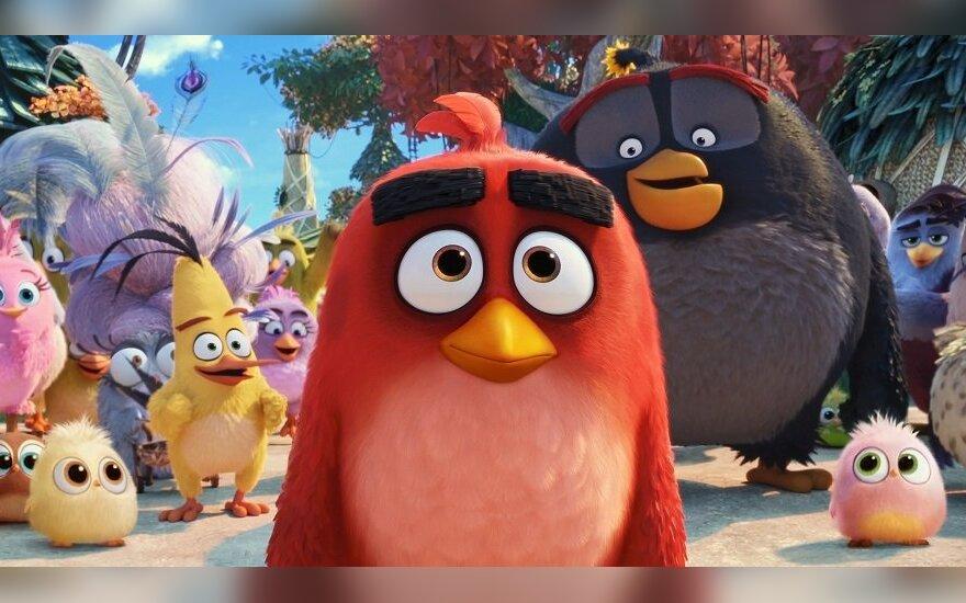 """Kadras iš filmo """"Piktieji paukščiai. Filmas 2"""""""