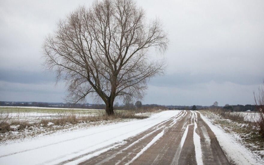 Valius Ąžuolas: Lietuvoje turime per 40 tūkst. km savivaldybės žvyrkelių