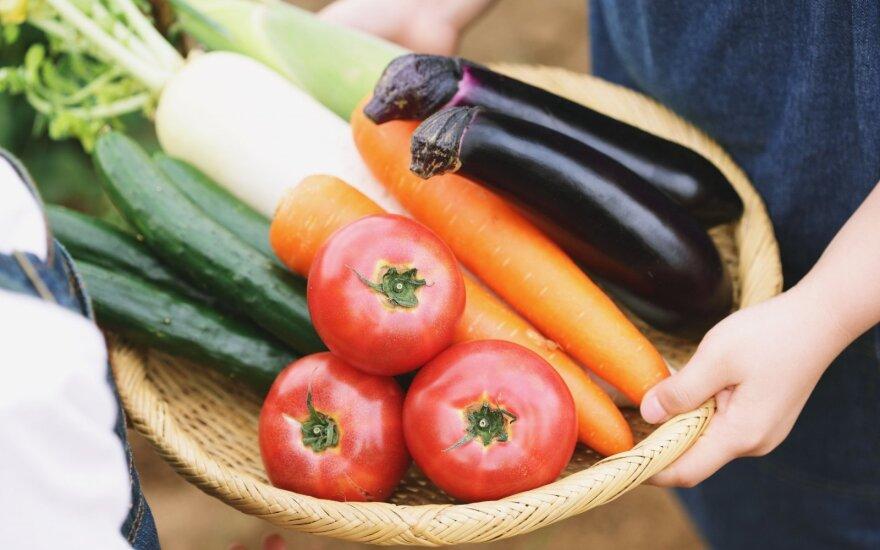 Praradęs kantrybę veganas išdėstė tai, ką nutyli dietologai