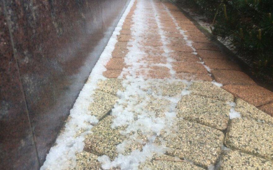 Prienų r. iškrito sniegas