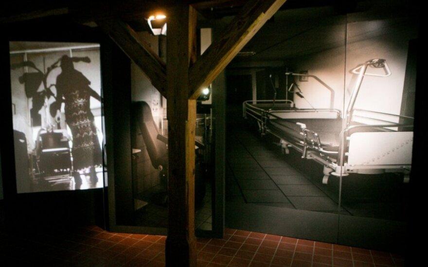 S. ir P. Stanikų parodoje – šiurpiai persipinanti gimimo ir mirties tema