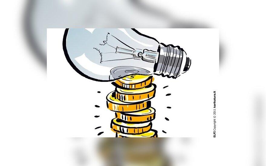 L.Graužinienė: padidinus elektros kainą gyventojams bus statoma nauja elektrinė