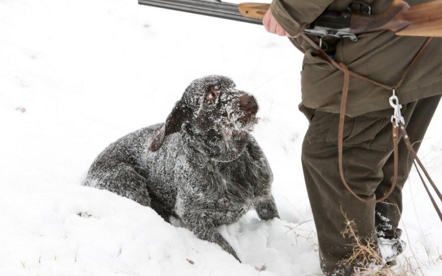 Smurtautojai prieš gyvūnus: neslėpk, pranešk ir padėk nubausti!