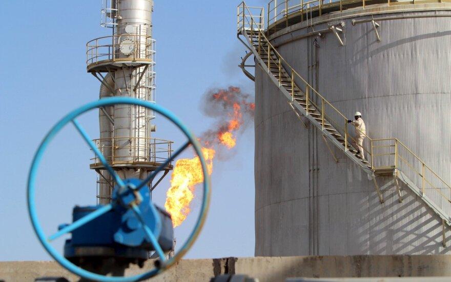 Irakas: reikia lanksčiai kovoti su naftos pertekliumi