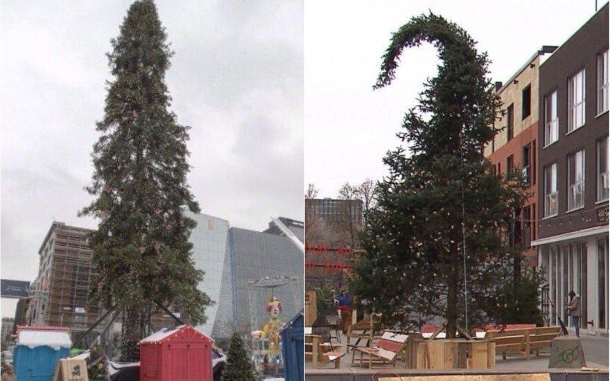 Monrealo Kalėdų eglė