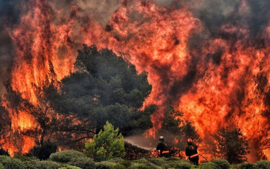 Dėl gaisrų evakuoti penkių Graikijos Eubojos salos kaimų gyventojai