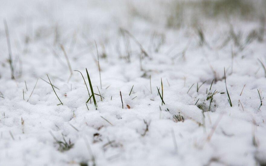 Orai: paskutinis šalčio protrūkis