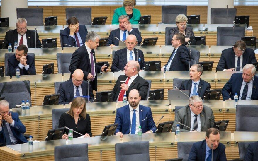 Seimas po pateikimo pritarė referendumui dėl Seimo narių skaičiaus mažinimo