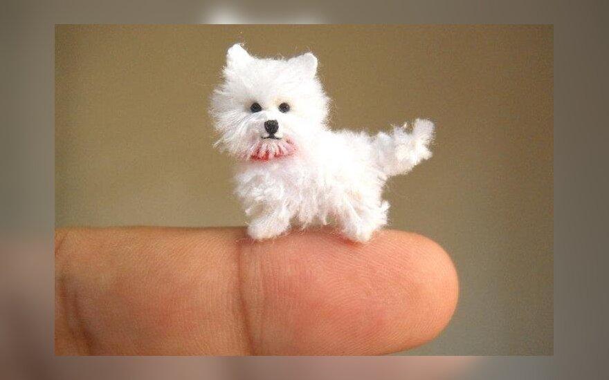 Menininko sukurti miniatiūriniai gyvūnai