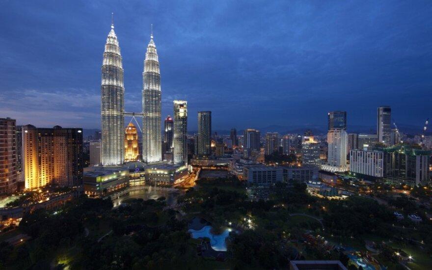 Malaizijoje skirta įkalinimo bausmė vyrui, nugalabijusiam katę skalbinių džiovyklėje