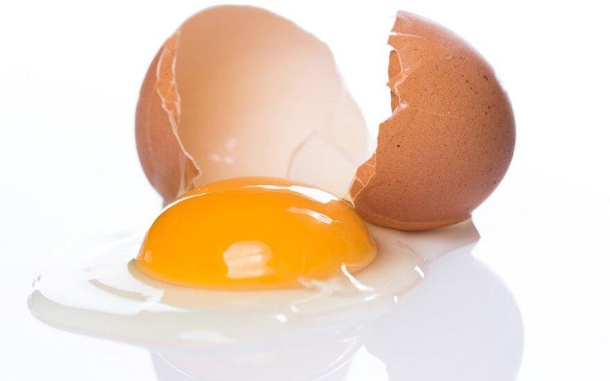 Linksmas ir naudingas video: kaip atskirti kiaušinio trynį nuo baltymo
