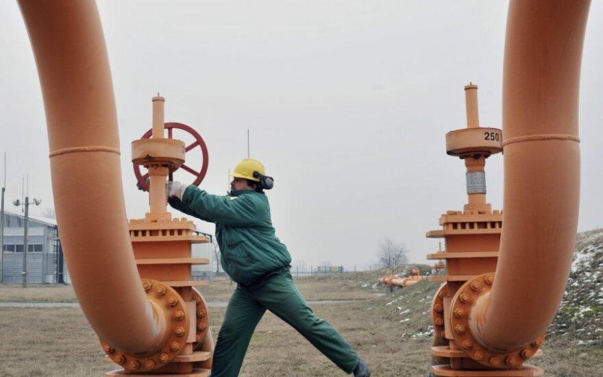 Lietuva norėtų iš Izraelio pirkti dujų