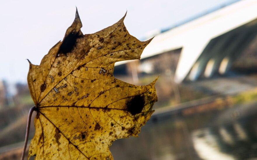 Orai: bus saulėta, bet rudeniškai vėsu