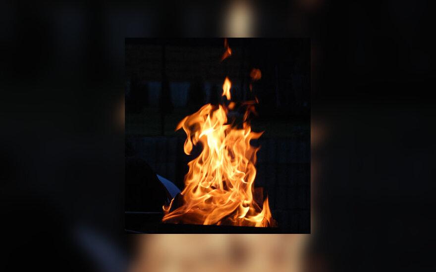 Ugnis, liepsna, kepsninė