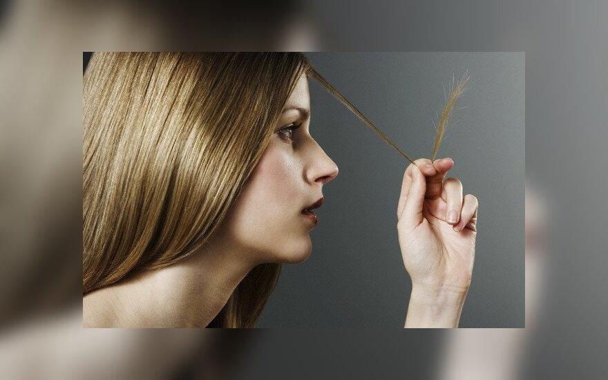 Plaukų būklės diagnostika