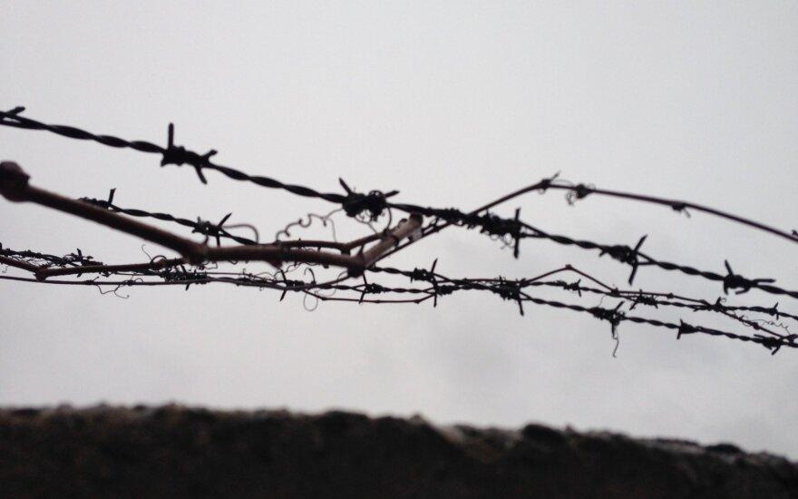 Bud wire