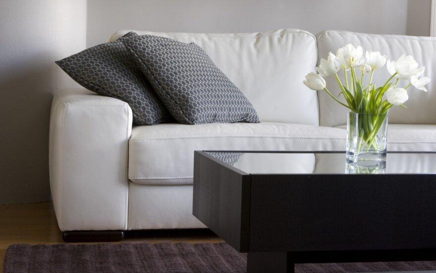 5 aspektai, padėsiantys išsirinkti kokybišką odinį baldą