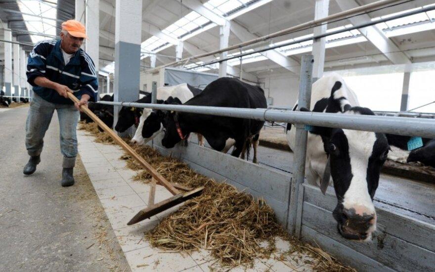 Bando suprasti, kodėl ūkininkai nedaro to, kas jiems naudinga