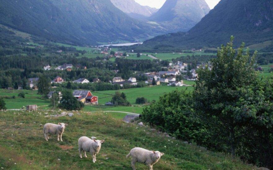 Norvegijoje gyvenantis lietuvis pasidalino savo patirtimi su tėveliais