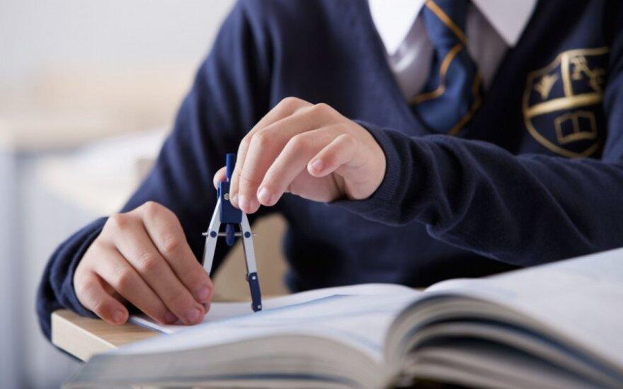 Paauglė piktinasi, kad Lietuvos mokyklose mokytis neįmanoma