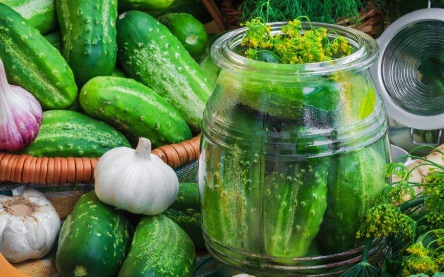 Marinuoti agurkai su juodųjų serbentų sultimis