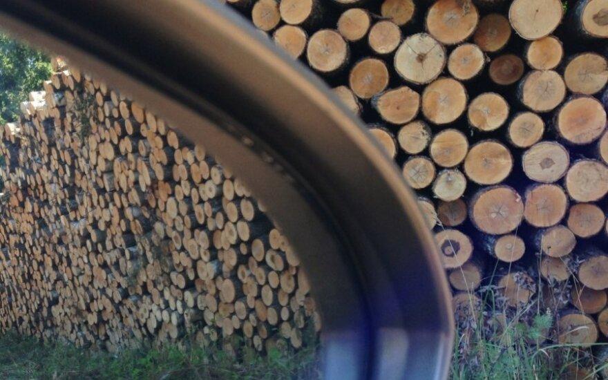 Miškus padeda saugoti vaizdo stebėjimo kameros