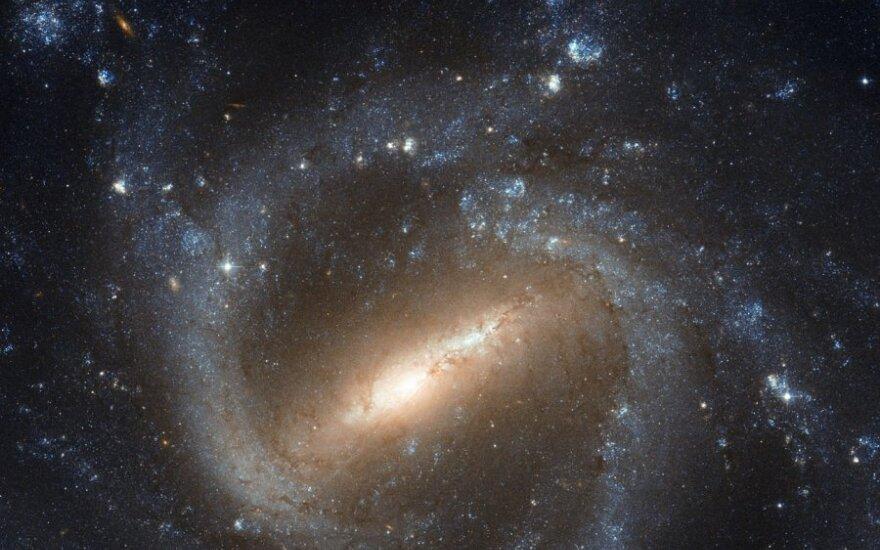 """""""Hubble"""" palydovo užfiksuotas NGC 1073 galaktikos vaizdas"""