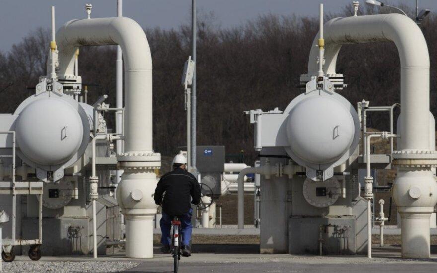 ES turės naują dujų donorą