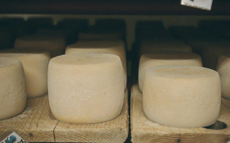 Kietasis sūris