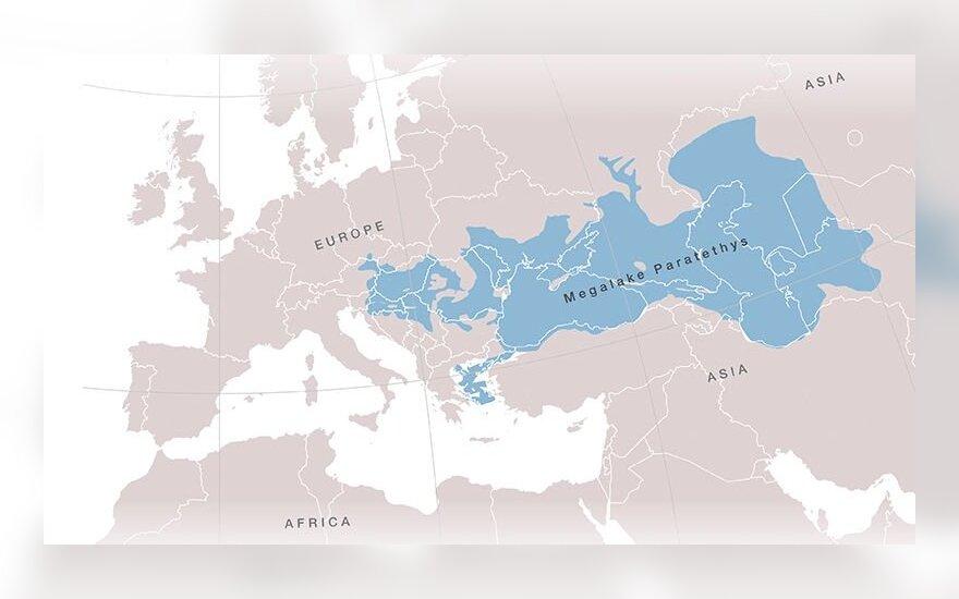 Paratečio jūra buvo daugiau niekur nerandamų rūšių namais, tarp kurių ir Cetotherium riabinini (žmogus šalia pavaizduotas dėl mastelio), mažiausių pasaulyje fosilinių banginių. Pavel Gol'Din; Lena Godlevska/Wikimedia Commons nuotr.