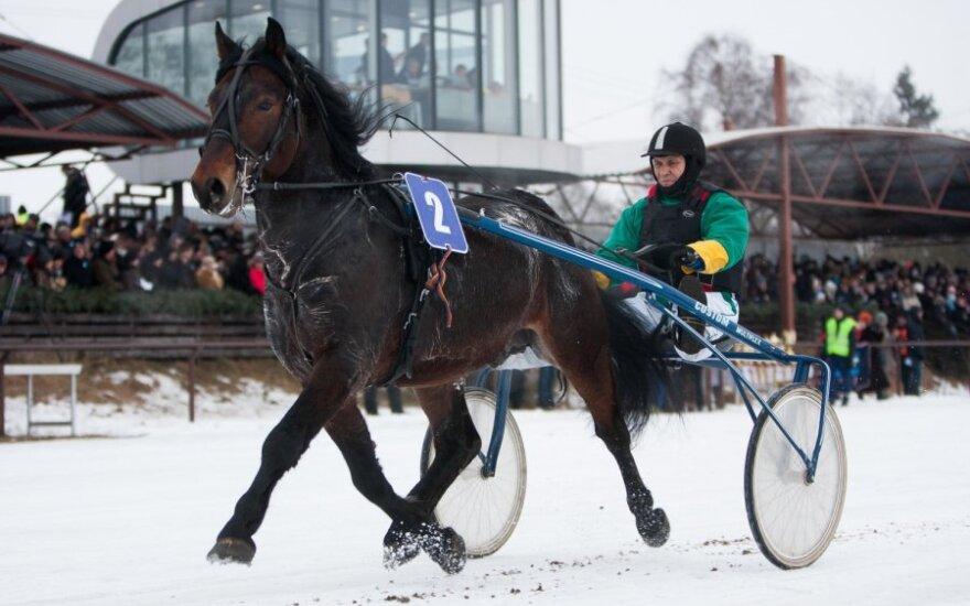 Šeštadienį Dusetas drebino Sartų žirgų lenktynės