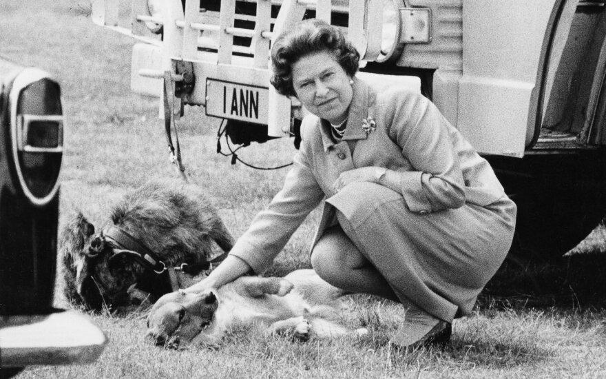 Karalienė Elžbieta II ir jos korgiai
