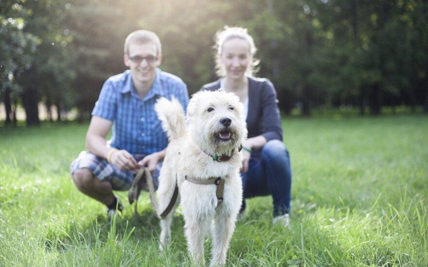 Jauną porą kaip reikiant išgąsdino priglaustas holivudinis šuo