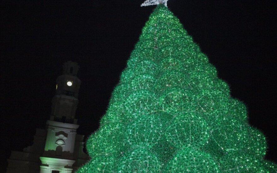 Kauno Kalėdinė eglė