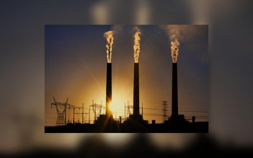 Sausį pramonės produkcija sumažėjo