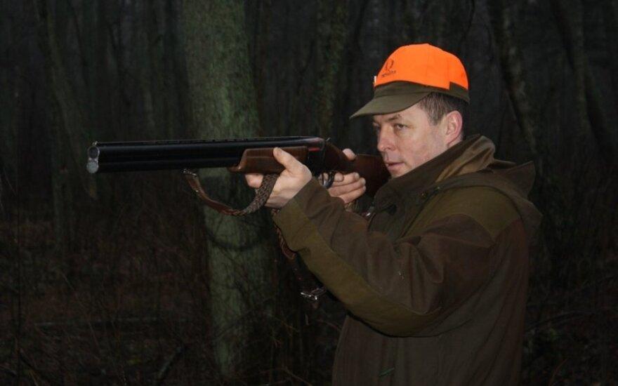 Šernų medžioklė Girulių miške
