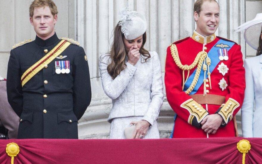 D. Britanijos monarchams teko teisinti princo Williamo išlaidas