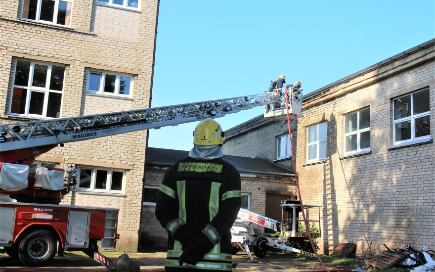 Klaipėdoje į mokyklą dėl gaisro atskubėję ugniagesiai užjudino širšių lizdą