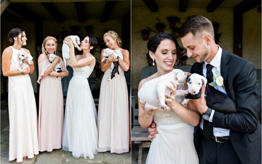 Vestuvės su šuniukais