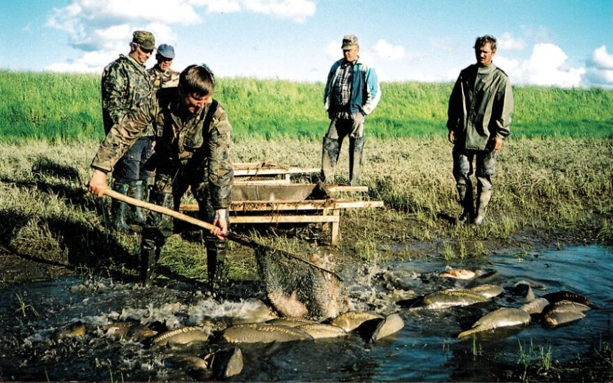 Ekologinė žuvininkystė