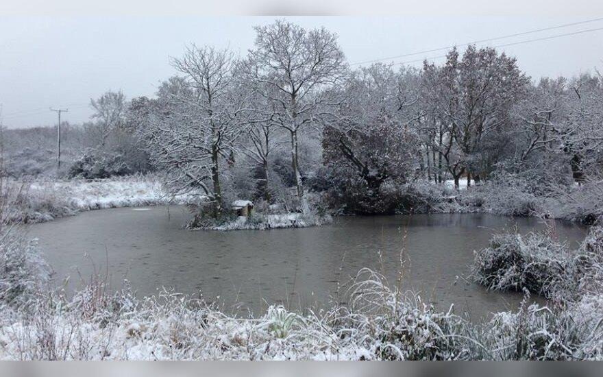 Karpiukų žiemojimo tvenkinys