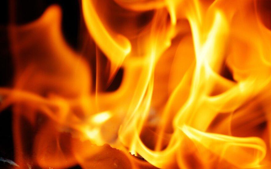 Medžio pjuvenų granulių gamykloje Ukmergės rajone kilo gaisras