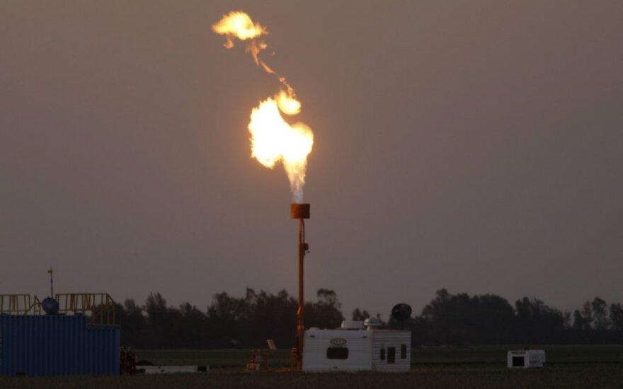 Skalūnų dujos, nafta