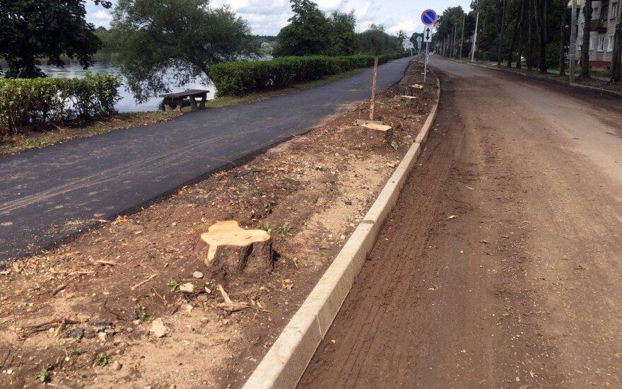 S. Skvernelis: diskusija dėl medžių kirtimo Kaune turėjo vykti be policijos