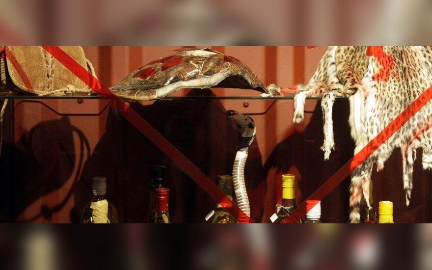 skorpionų prekybos sistema)