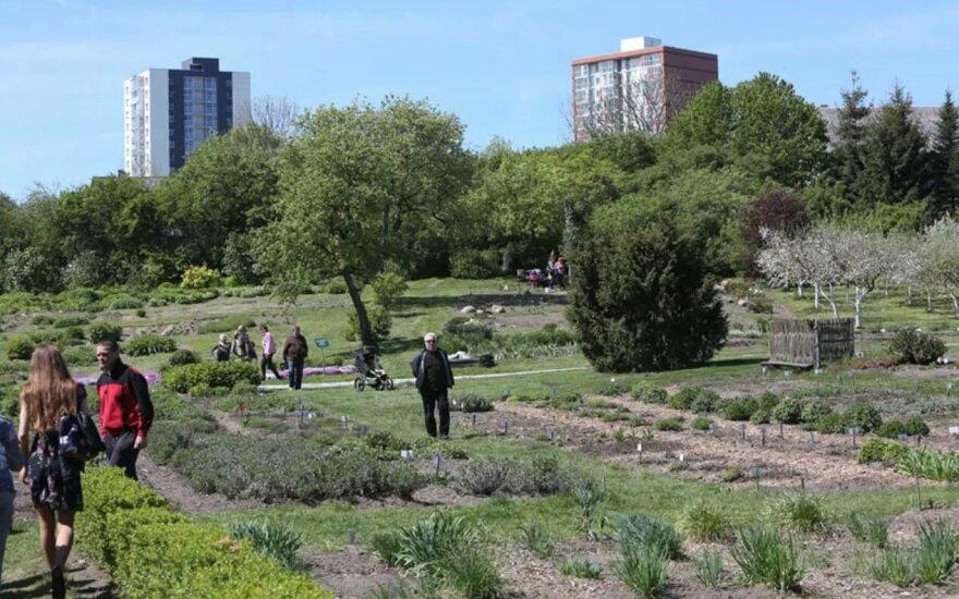 Klaipėdos universiteto Botanikos sode – unikalūs planai: atsiras Rytų Azijos sodai