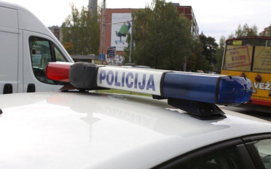 Vilniuje partrenkta stirna atsidūrė automobilio salone