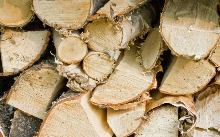 """FNTT: """"medinukai"""" pigesnę medieną išveždavo į Kiniją"""