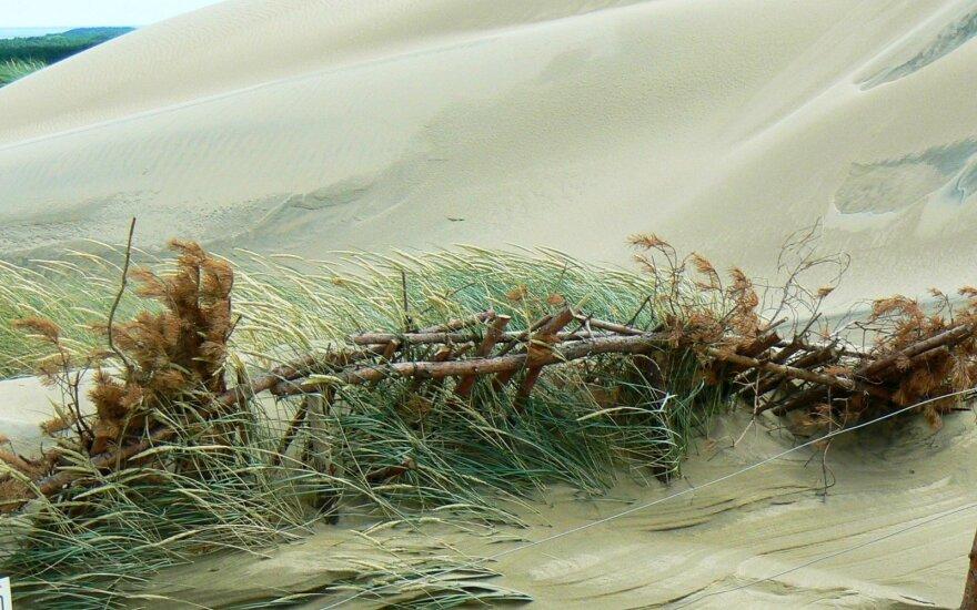 Mirusios kopos